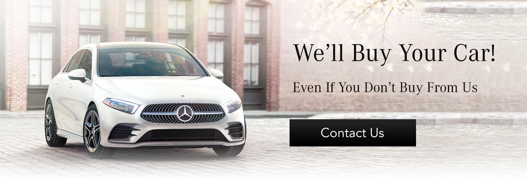 EMB_HP_we will buy your car